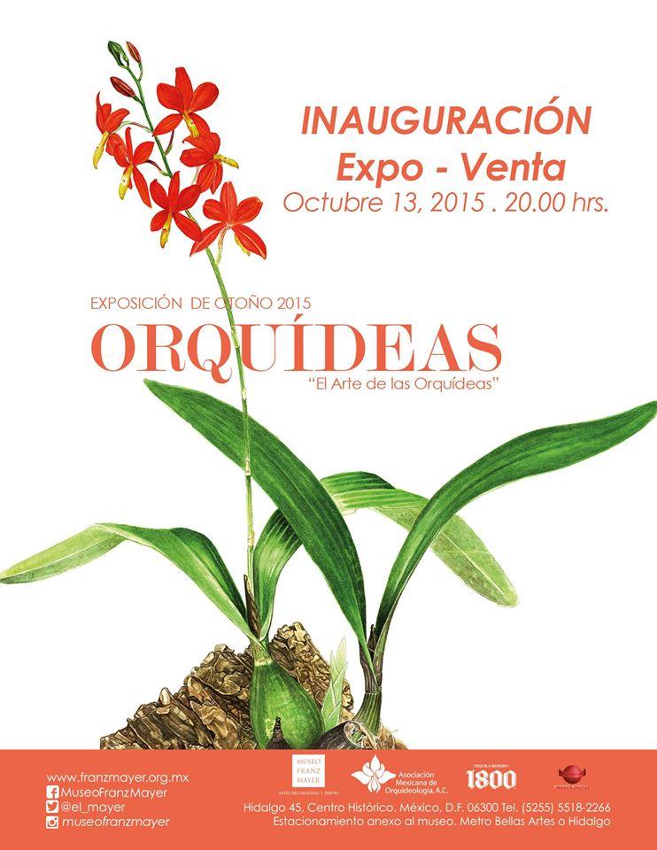 \u201cEl arte de las Orquídeas\u201d Expo,Venta @el_mayer Franz Mayer \u2013 HELLO DF
